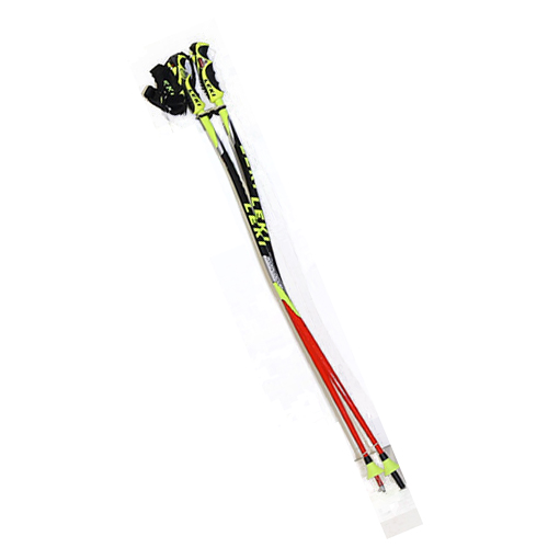 Ski Poles gear on sale